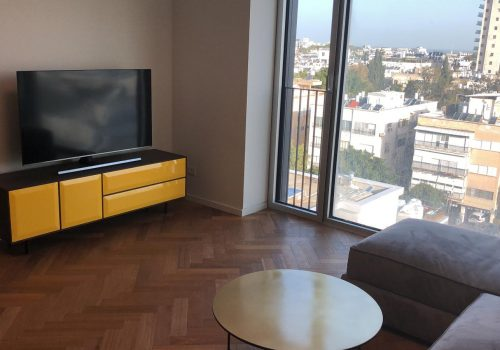 Furnished Apartment in Assuta Tower